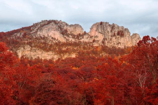 Free Stock Photo of Seneca Rocks - Autumn Red HDR