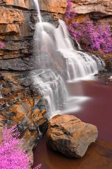 Free Stock Photo of Blackwater Profile Falls - Rusty Purple Fantasy
