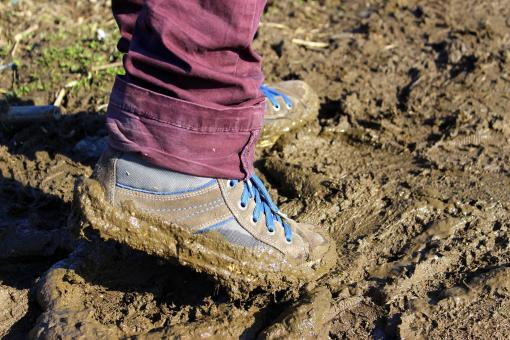 Free Stock Photo of Work in the Mud
