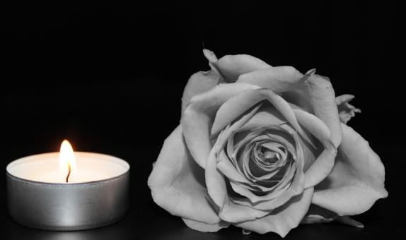Free Stock Photo of Candle and Rose