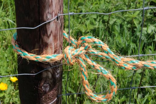 Free Stock Photo of Tied Rope