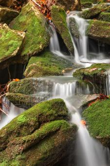 Free Stock Photo of Mossy Rohrbaugh Waterfall - HDR