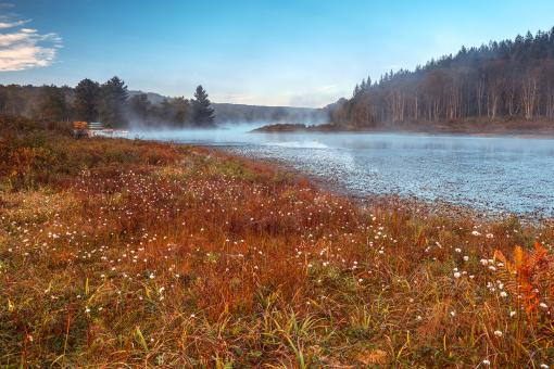 Free Stock Photo of Pendleton Cotton Mist Lake - HDR