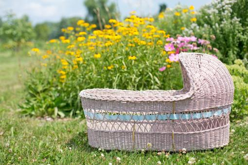 Free Stock Photo of Bassinet in the Garden