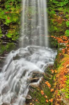Free Stock Photo of Fulmer Autumn Moss Falls - HDR