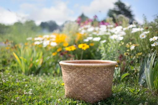 Free Stock Photo of Basket in the Garden