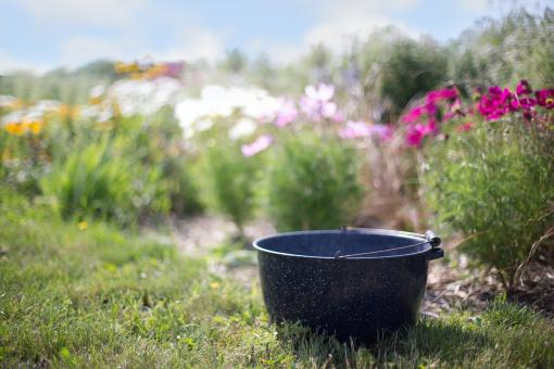 Free Stock Photo of Washtub in the Garden