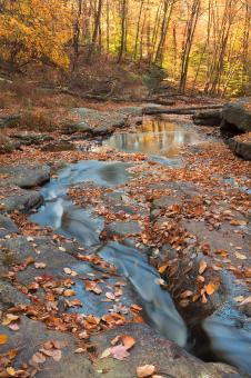 Free Stock Photo of Autumn Boomerang Stream