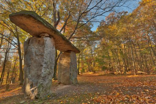 Free Stock Photo of Autumn Megalith Forest - HDR