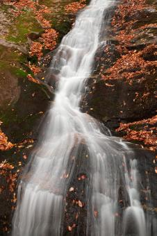 Free Stock Photo of Autumn Crabtree Falls