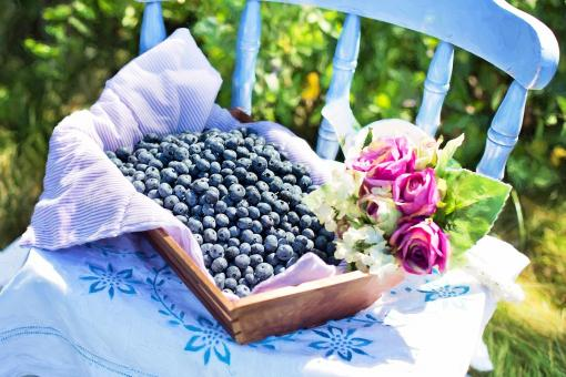 Free Stock Photo of Fresh Blueberries