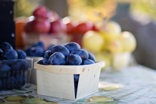 Free Stock Photo of Fruit on the Table - Blueberries and Grape