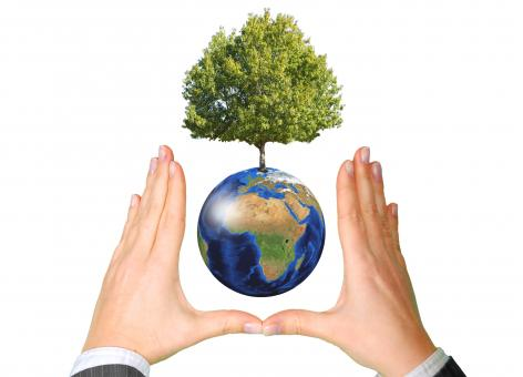 Free Stock Photo of Earth with Tree between Hands - Ecology Concept
