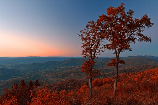 Free Stock Photo of Shenandoah Twilight Overlook - Ruby Autumn HDR