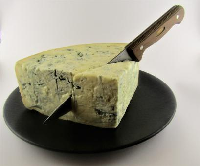 Free Stock Photo of Gorgonzola Cheese