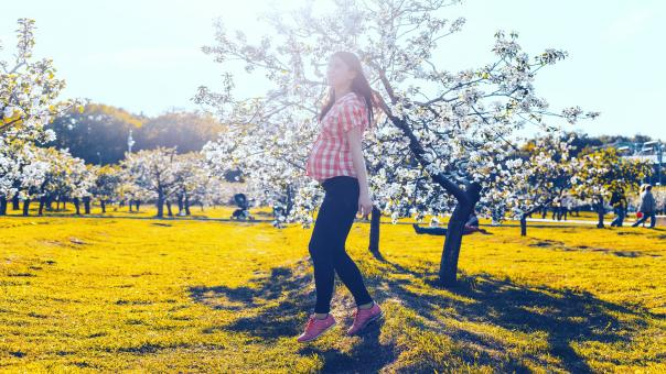 Free Stock Photo of Pregnant Woman with Flower Tree