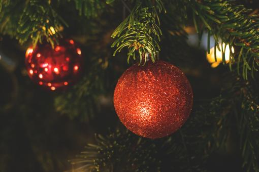 Free Stock Photo of Christmas Tree Ornament