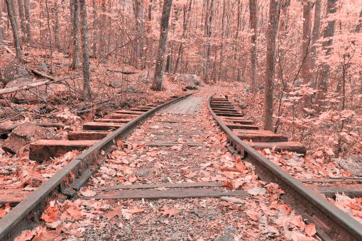 Free Stock Photo of Pink Autumn Logging Railroad - HDR