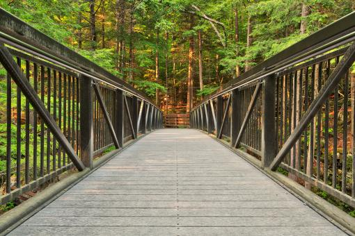 Free Stock Photo of Green Mountain Forest Bridge - HDR