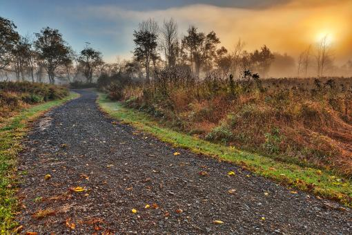 Free Stock Photo of Misty McDade Sunrise - HDR