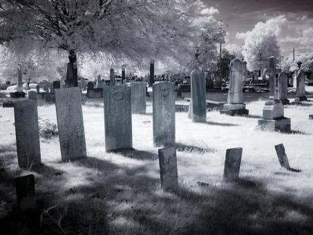 Free Stock Photo of Grave Yard