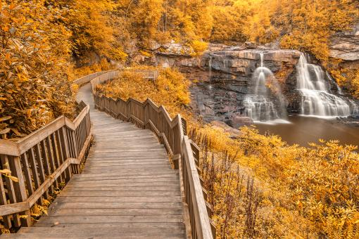 Free Stock Photo of Winding Blackwater Falls - Gold Fantasy HDR