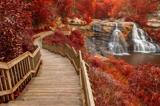 Free Stock Photo of Winding Blackwater Falls - Autumn Fantasy HDR