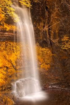 Free Stock Photo of Gold Decadence Falls