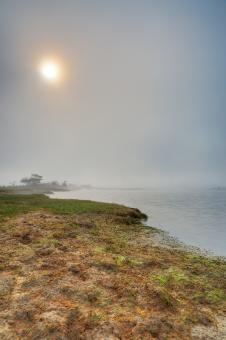 Free Stock Photo of Misty Sun Kissed Marsh - HDR