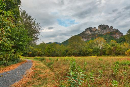 Free Stock Photo of Seneca Rocks Trail - HDR