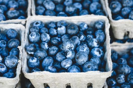 Free Stock Photo of Blue Berries