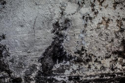 Free Stock Photo of Grunge Peeling Wall Background