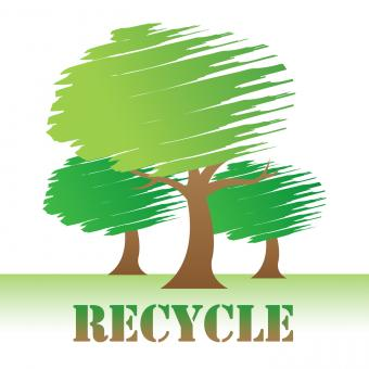 Free Stock Photo of Recycle Trees Shows Earth Friendly And Reuse