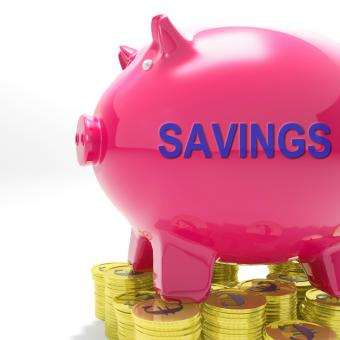 Free Stock Photo of Savings Piggy Bank Means Spare Funds And Bank Account
