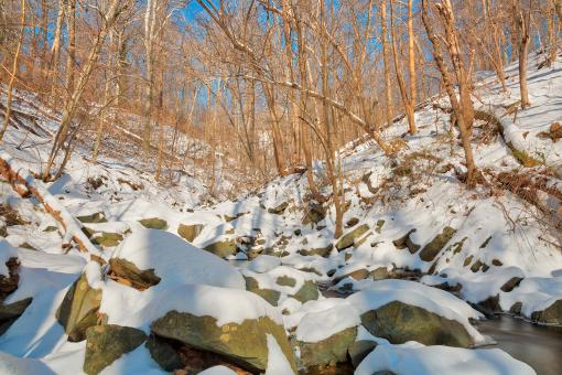 Free Stock Photo of Glen Artney Vinterscape - HDR