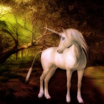 Free Stock Photo of Unicorn