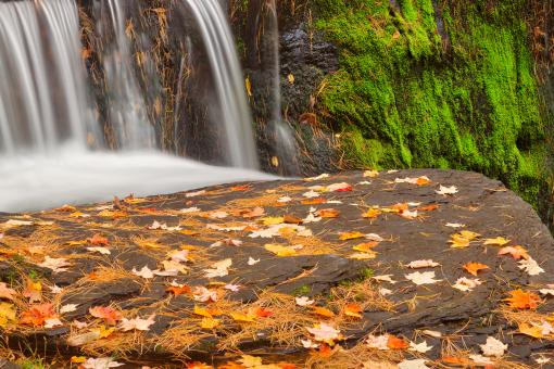 Free Stock Photo of Autumn Moss Factory Falls - HDR