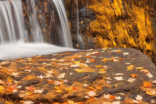 Free Stock Photo of Autumn Moss Factory Falls - Gold Fantasy HDR