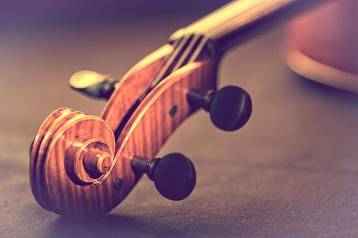 Free Stock Photo of Violin - Scroll and Pegbox Close-Up - Retro Looks Warm Colors