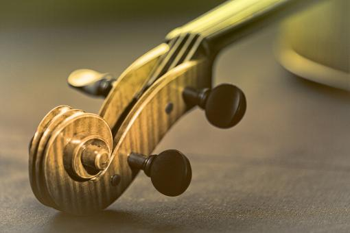 Free Stock Photo of Violin - Scroll and Pegbox Close-Up - Retro Looks