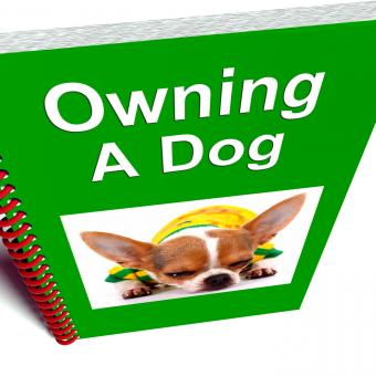 Free Stock Photo of Owning A Dog Book Shows Canine Care Advice
