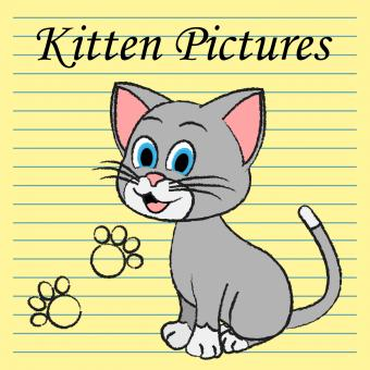 Free Stock Photo of Kitten Pictures Indicates Feline Images And Photos