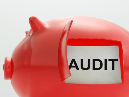 Free Stock Photo of Audit Piggy Bank Means Inspection And Validation