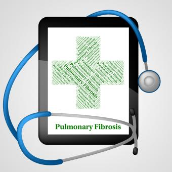 Free Stock Photo of Pulmonary Fibrosis Represents Ill Health And Ailment