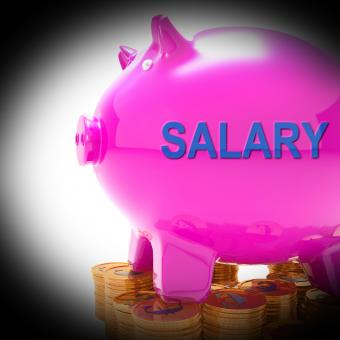 Free Stock Photo of Salary Piggy Bank Coins Means Payroll And Earnings