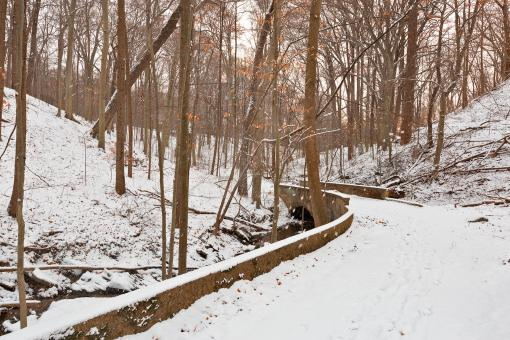 Free Stock Photo of Rustic Winter Bridge Trail