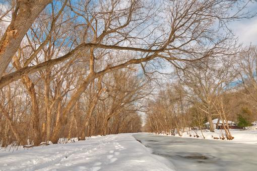 Free Stock Photo of Winter Canal Trail - HDR