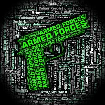 Free Stock Photo of Armed Forces Indicates Military Service And Army