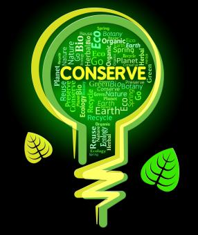 Free Stock Photo of Conserve Lightbulb Shows Sustainable Conserving And Protecting