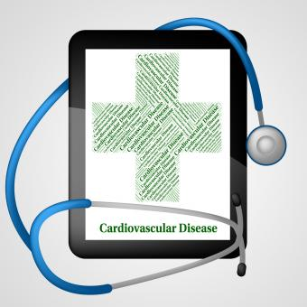Free Stock Photo of Cardiovascular Disease Means Blood Vessels And Ailments
